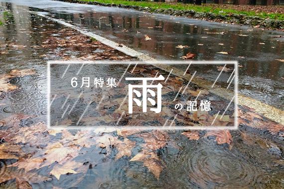 雨シリーズ3